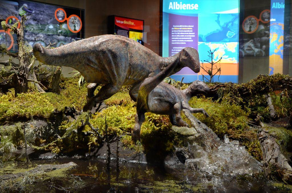 Reconstrucción paleoecológica (diorama) del Albiense en la zona de Ariño