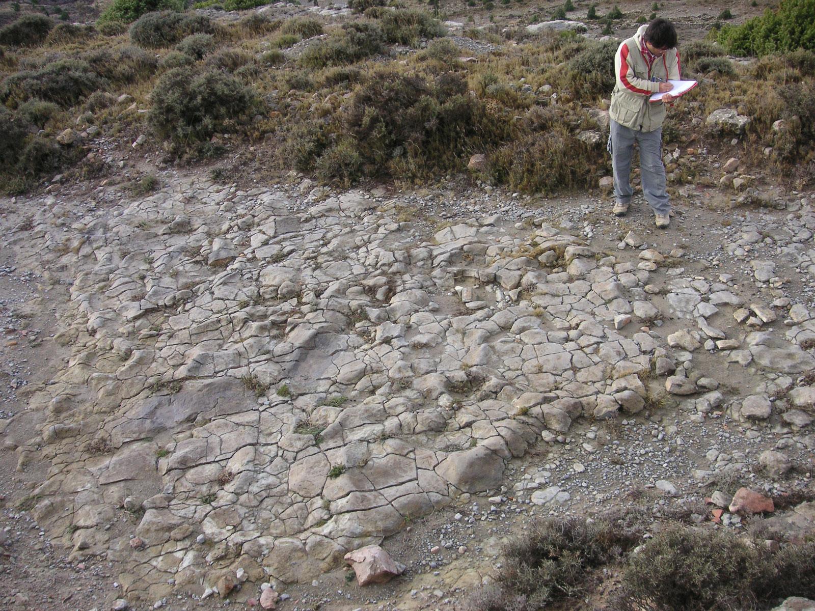 Camino El Berzal, El Castellar