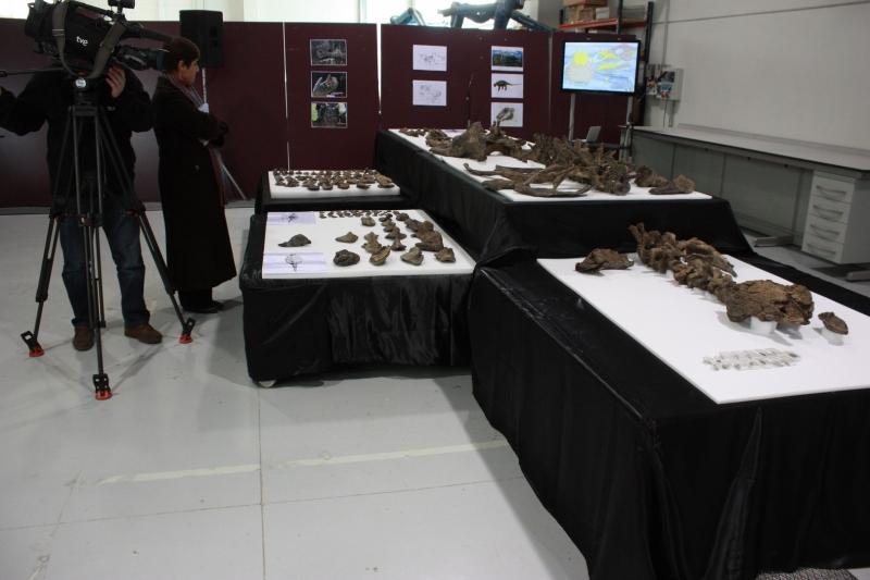 Galería excavaciones en el yacimiento de Ariño.