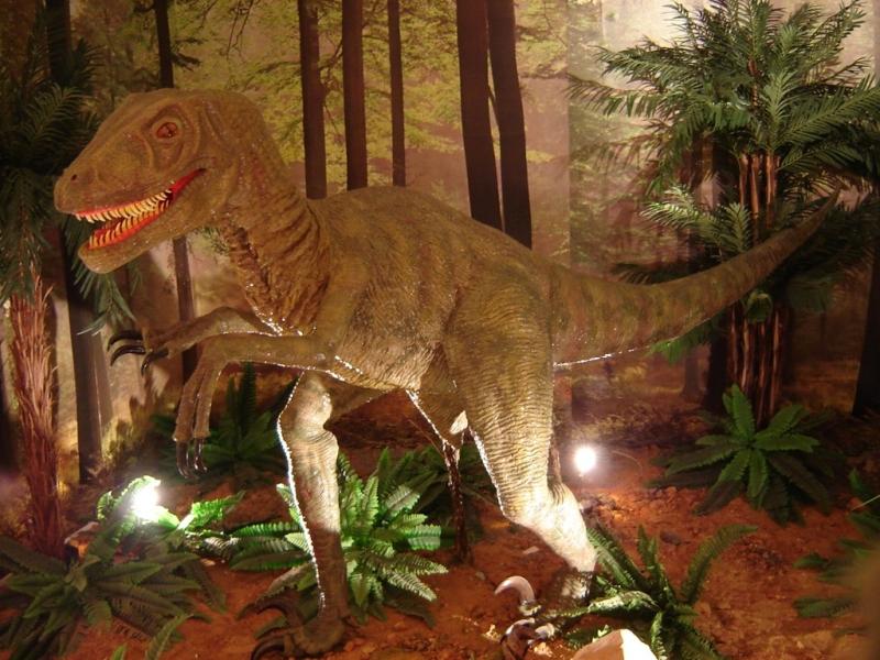 Reproducción dromeosaurio